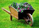 Декоративная тачка с цветами в саду